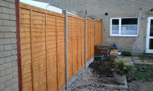 Fence Repairs and replacement